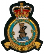 Air Force SQUADRON FEDELE Blazer Badge
