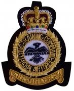 Flying Training Command Blazer Badge