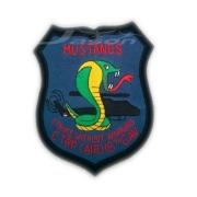 TRPC AIR 16th CAVALRY  U.S.A Army Badge